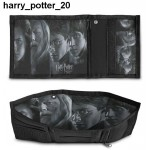 Portfel Harry Potter 20