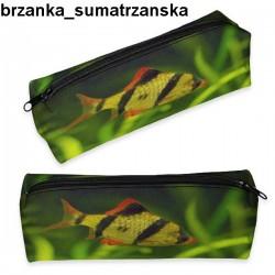 Piórnik Brzanka Sumatrzanska 01