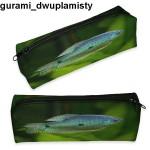 Piórnik Gurami Dwuplamisty 01