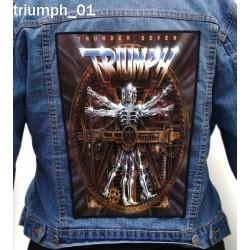 Ekran Triumph 01
