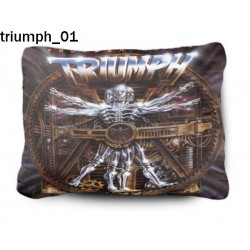 Poduszka Triumph 01