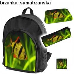 Zestaw szkolny Brzanka Sumatrzanska 01