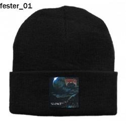 Czapka zimowa Fester 01